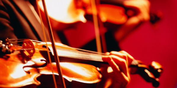 Introduction to Violin