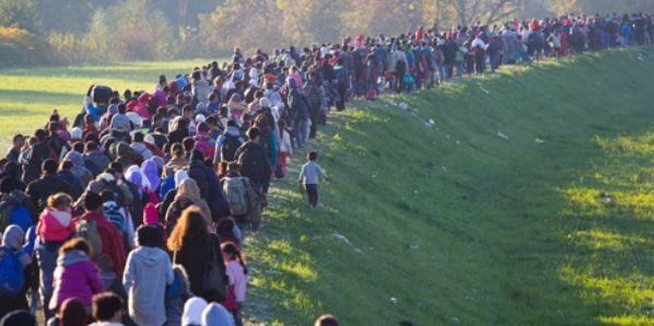 Forced Migration and Refugees: Theoretical and Applied Perspectives of Social Sciences